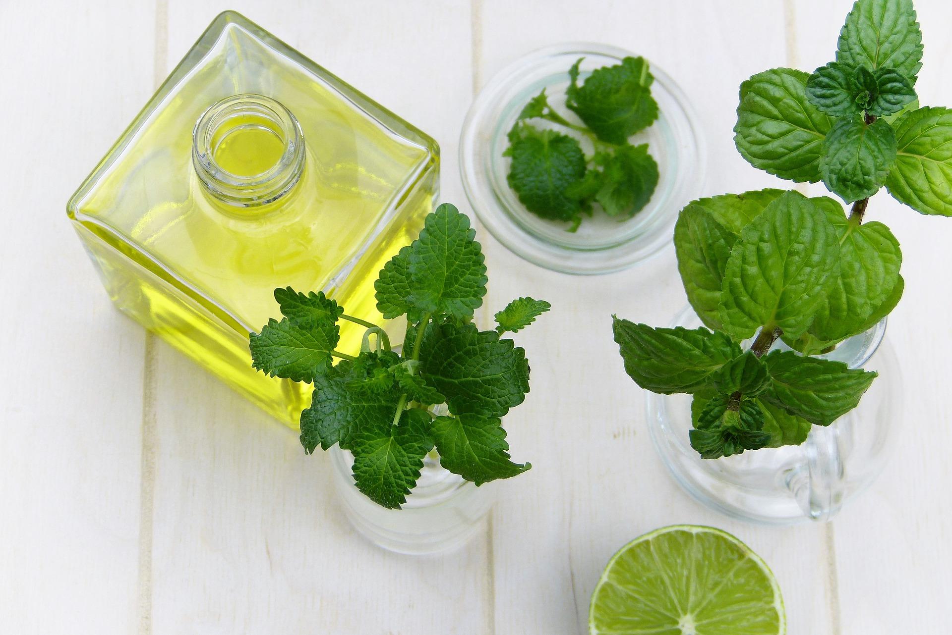 Marula : l'huile parfaite pour votre peau